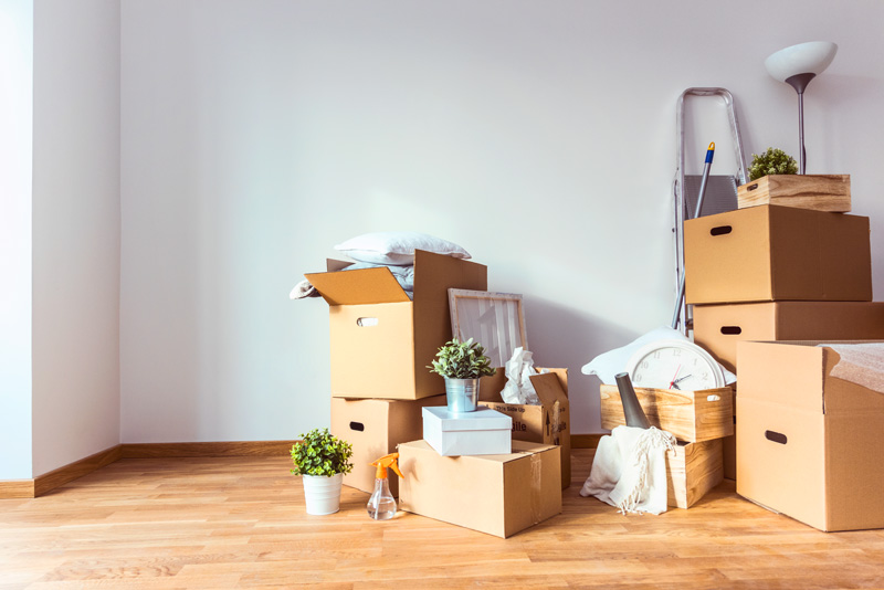 move-out-cleaning